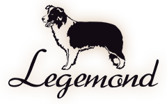 Legemond logo